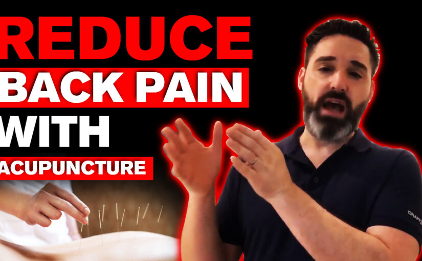 BPS #041: How To Reduce Back Pain With Acupuncture…